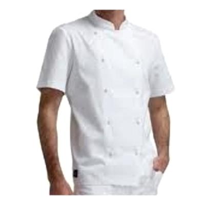 giacca cuoco bianca manica corta